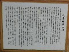 151229kamo23.JPG
