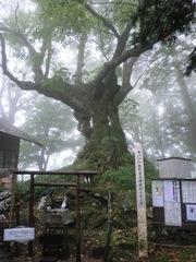 2012.10.07.kumano30.JPG