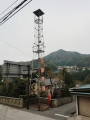20120430maki2.JPG