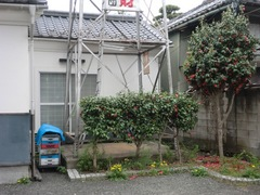 2013.02.27.zenkouji5.JPG