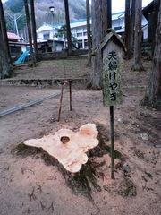 2013.03.08.koyasu4.JPG