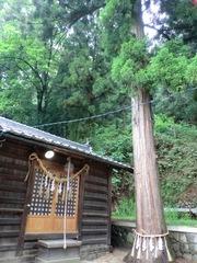 2013.03.10.namiyanagi4.JPG