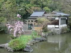 2013.04.06.itsukushima1.JPG
