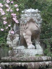 2013.04.07.okazaki7.JPG