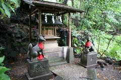 2013.06.16.hikawa23.JPG
