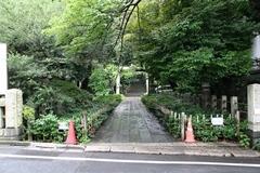 2013.06.16.hikawa4.JPG