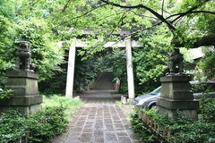 2013.06.16.hikawa5.JPG