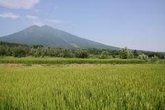 2013.08.15.iwakiyama44.JPG