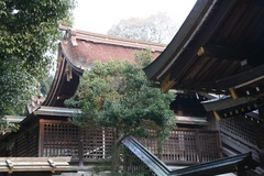 2013.12.31.kamayama14.JPG