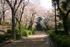 2014.04.08.ushijima2.JPG