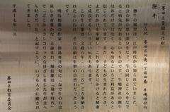 2014.04.08.ushijima45.JPG