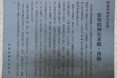 2014.05.04.afuchi3.JPG