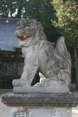 2014.10.12.katori9.JPG