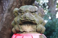 2014.12.13.sumiyoshi84.JPG