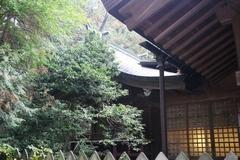 2015sumiyoshi48.JPG